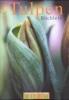 Tulpenbüchlein