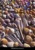 Postkarten Strandfunde – Meeresmuscheln