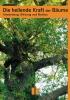 Die heilende Kraft der Bäume